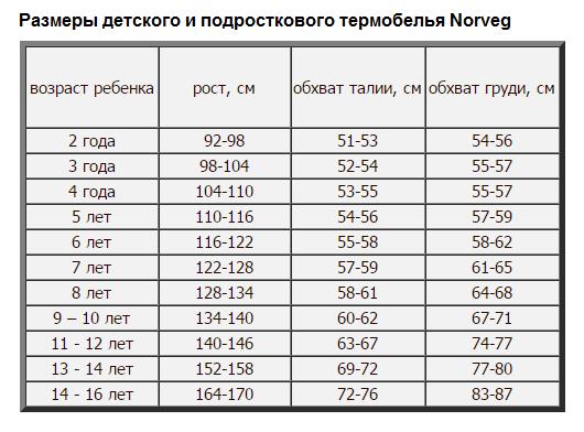 Детское термобелье-водолазка Norveg купить в СПБ